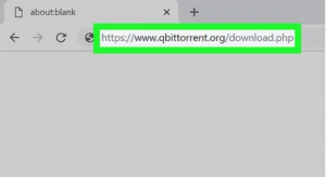 How to open Torrent file